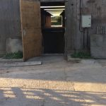 pig-shed-back-door